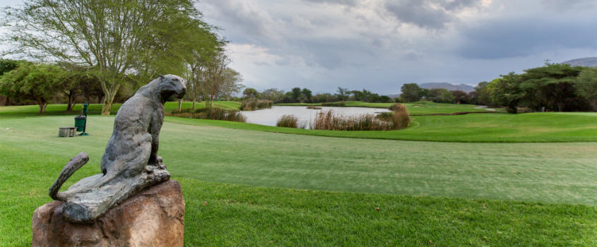 Cape-Town-The-Western-Cape-Classic-Golf-Safari