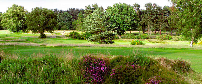 Walton-Heath-Golf-Club-England