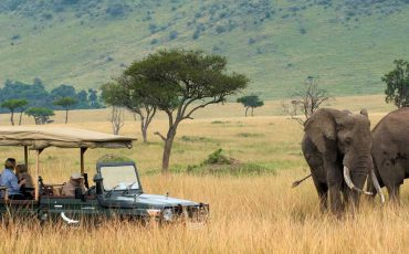 GOLF AND SAFARI, SOUTH AFRICA